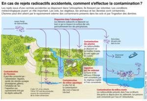 Contamination de l'environnement suite à des rejets radioactifs accidentels